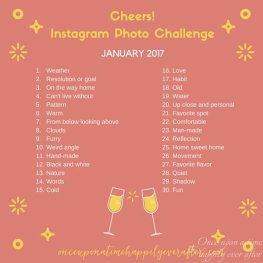 Instagram Photo Challenge, 1.2017