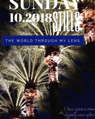 The World Through My Lens, 10.2018