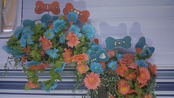 Adorable floral arrangement.