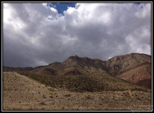 McKelligon Canyon walks on Sundays.
