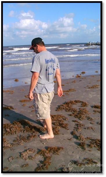 Seaweed Shuffle