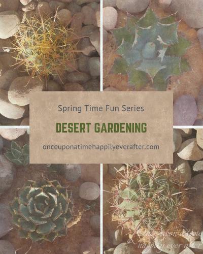 Desert gardening, 5.15.2017