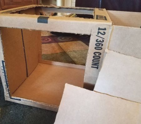 DIM, Did It Myself: Pinspired Photography Light Box