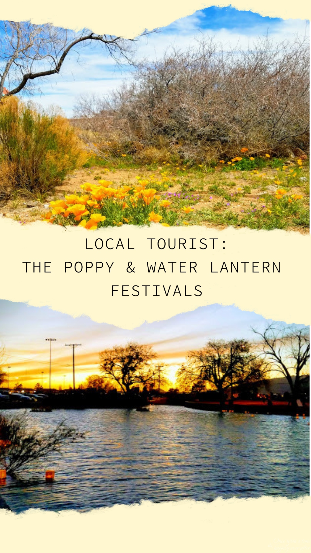 Local Tourist: Poppy Fest & The Water Lantern Festival