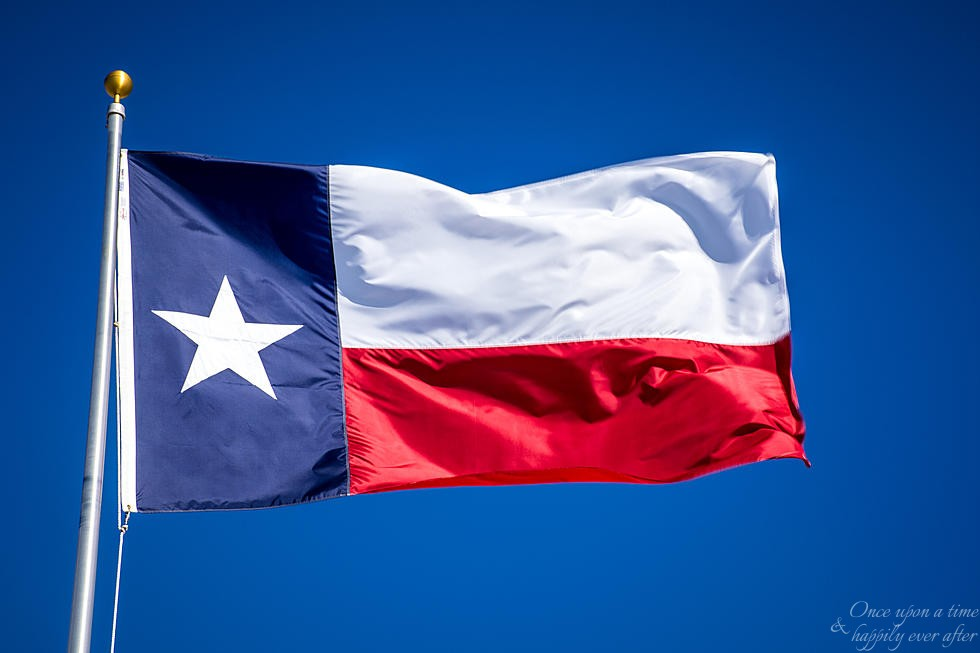 The Lone Star State: Where Bloggers Live, 03.2020